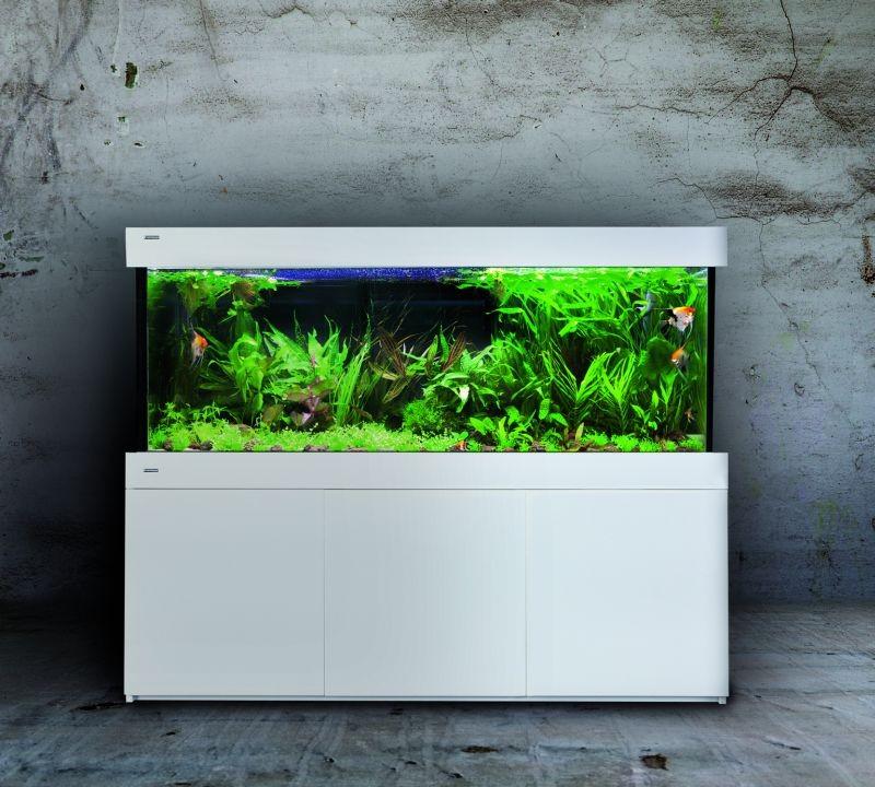 Aquarium Hochglanz Weiss Zuhause Image Idee